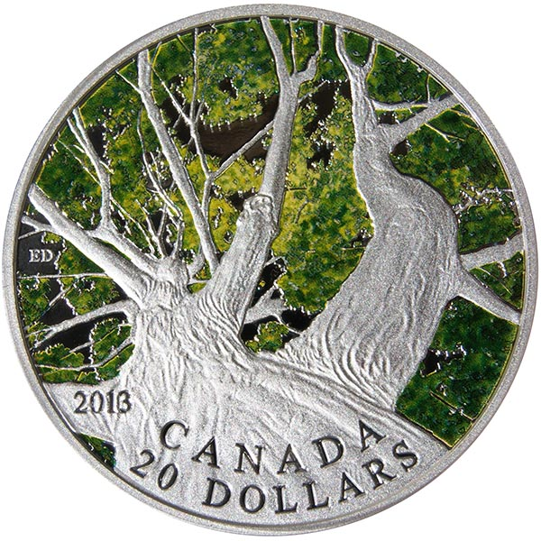 My photo of the 2013 Maple Tree Canopy (Spring) coin