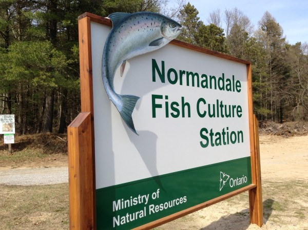 Normandale Fish Culture Station sign (and photo of sign) by Digital da Vinci Inc., Brantford, Ontario.